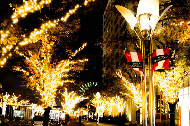 クリスマスには神戸でデートのタイトル画像:ハーバーランドの写真