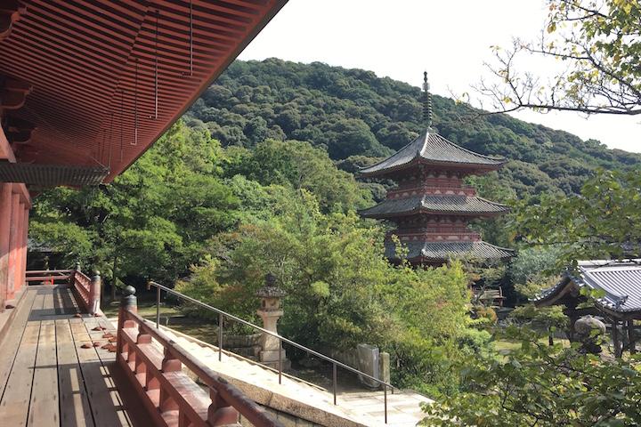 太山寺 本堂から見える三重塔