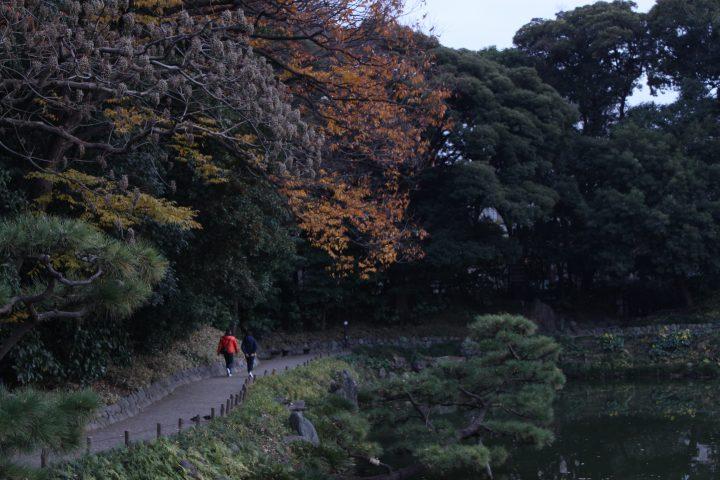 公園の景色